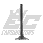 138210102 Tillotson 212R/225RS Stock 5mm 25mm Exhaust Valve