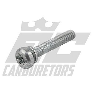 15C-51 Tillotson Standard Volume(Single Stack, Gas) Fuel Pump Body Screw